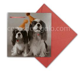 Felicitación de Navidad de dos perros con gorrito