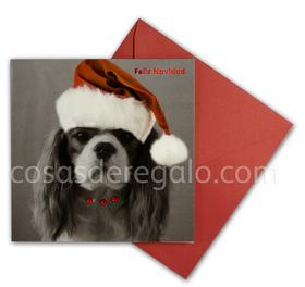 Felicitación de Navidad de perro piedrecitas y gorrito