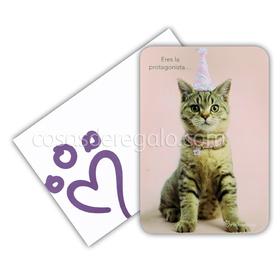 Felicitación de cumpleaños de rachaelhale gato Max