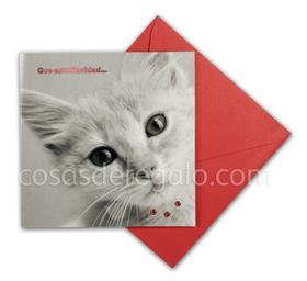 Felicitación de Navidad de gato con tres piedrecitas rojas