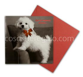 Felicitación de Navidad de perro blanco Con lazo rojo