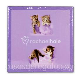 Caja S rachaelhale 13x13x13cm Gatos