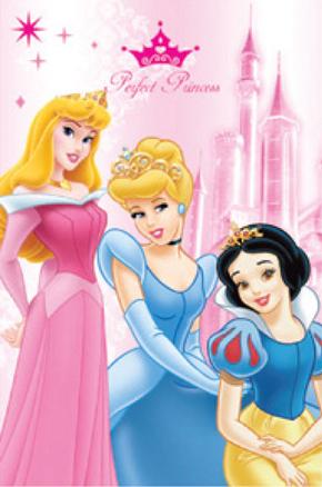 Manta polar de Princesas 100x150