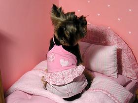 Pijama rosa con tirantes y shorts bordados corazón