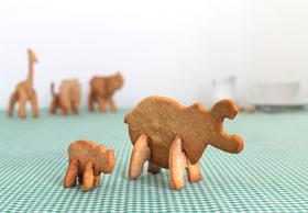 D2-sk-cookiesafari1-b