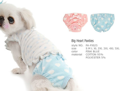 Big Heart Panties