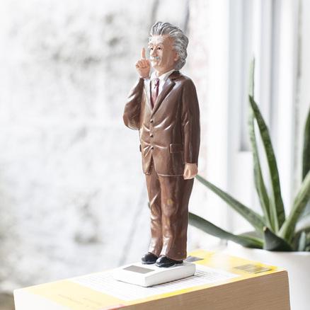 Einstein Solar