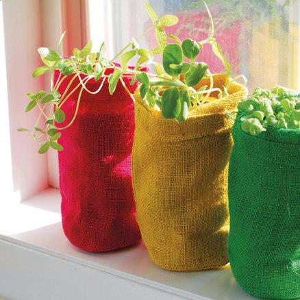 Planta en una bolsa de yute natural Girasol